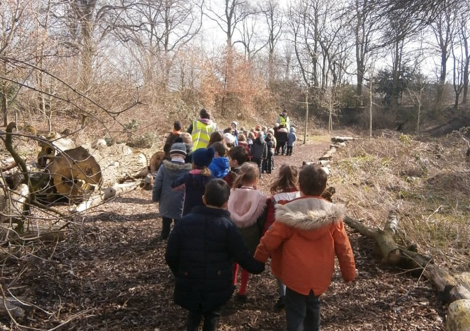 Year 1 go on the hunt for wildlife.